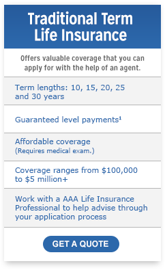 Term Life Insurance Online Quotes Alluring Term Life Insurance Quotes & Rates  Term Insurance  Aaa