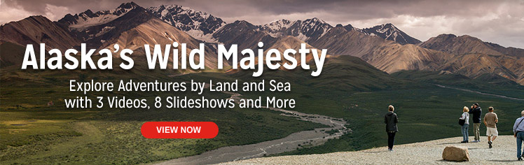 Alaska's Wild Majesty. Explore Adventures by Land and Sea with 3 Videos, 8 Slideshows and More.