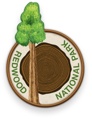 Redwood National Park 2016 patch with link to trip information and itinerary