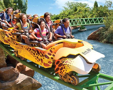 Image Result For Aaa Busch Gardens Tickets